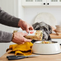 Merrick Dog Food Petco: Top Picks & Full Guides To Purchase