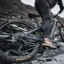 Top 8 Places To Buy Bicycles: Full Reviews + Valid Offers