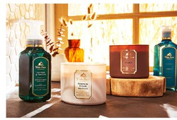save-with-bath-and-body-works-promotion-code-free-shipping