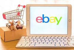 how-to-save-on-ebay-shopping-tips-reviews