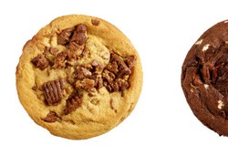insomnia-cookies-order-online-the-best-cookies-for-you